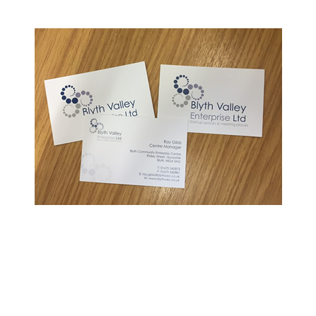 Blyth Valley Enterprise Ltd Business Cards